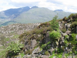 Snowdon South Ridge 2