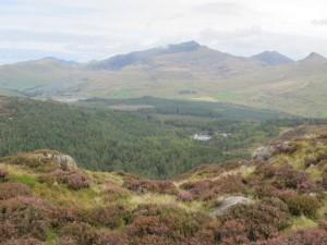 Rhyd Ddu Snowdon en Beddglert Forest